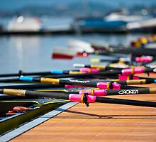 Rowing by Luca Renoldi