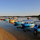 Maroochy River At Sunrise. Maroochydore, Qld, Australia. by Ralph de Zilva