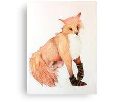 Fox with striped socks Canvas Print