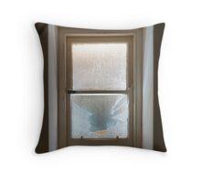 Broken Window Throw Pillow
