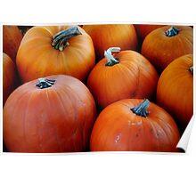 Pumpkins! Poster