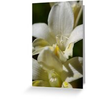 wild flower season again #3 Greeting Card