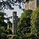 Keepers Watch Tower and Blarney Castle, County Cork, Ireland by Mary Fox