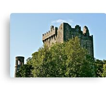 Blarney Castle, County Cork, Ireland Canvas Print