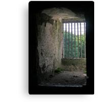 Window from inside Blarney Castle, County Cork, Ireland Canvas Print