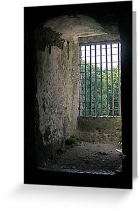 Window from inside Blarney Castle, County Cork, Ireland by Mary Fox