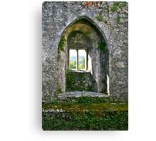 Foliage on Blarney Castle Window, County Cork, Ireland Canvas Print