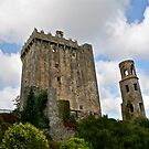 Blarney Castle and the Keepers Watch Tower, County Cork, Ireland by Mary Fox