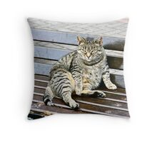 Irish Fat Cat, County Cork, Ireland Throw Pillow