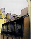 Paris Rooftops by Barbara Wyeth