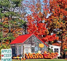 Apples Cider Pumpkins by djphoto