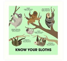 Know Your Sloths Art Print