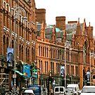 Dublin, Ireland by Mary Fox