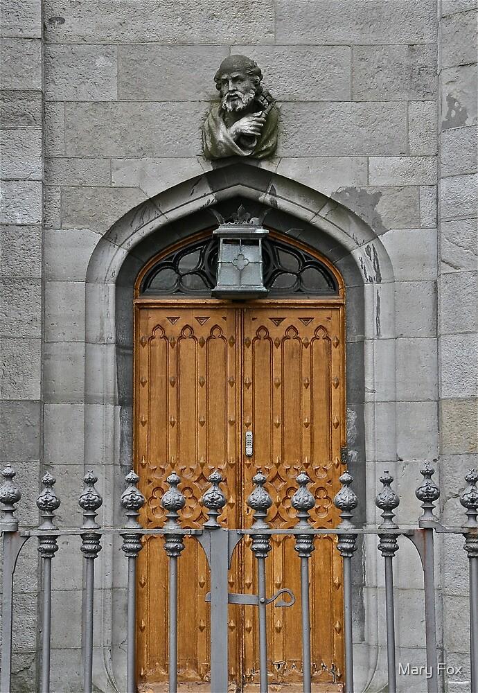 Dublin Castle Door, Dublin, Ireland by Mary Fox