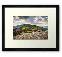 Jane Bald in Bloom - Roan Mountain Highlands Landscape Framed Print