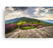 Jane Bald in Bloom - Roan Mountain Highlands Landscape Canvas Print