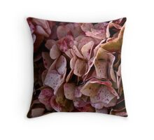 Irish Chrysanthemum, Dublin, Ireland Throw Pillow