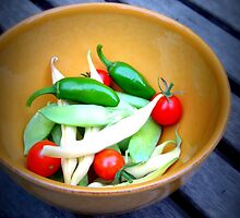 garden vegetables by sarah noce