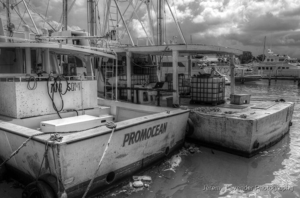 Fishing Boats at Potter's Cay in Nassau, The Bahamas by Jeremy Lavender Photography