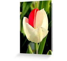 Floriade - Simply the Best Greeting Card