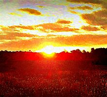 Here Comes the Sun by Lisa Taylor