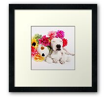 Beebs & Babes Flower Crown Framed Print