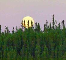 Full Moon Risin' On The Horizon by MaeBelle