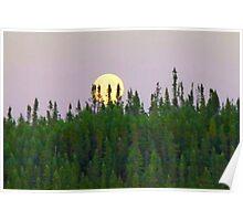 Full Moon Risin' On The Horizon Poster