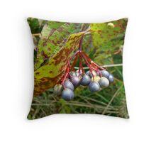 Autumn Viburnum Berries Series #1 Throw Pillow