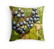 Autumn Viburnum Berries Series #3 Throw Pillow