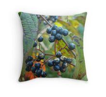 Autumn Viburnum Berries Series #2 Throw Pillow