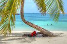 Sleeping on the beach under the Palm Tree by 242Digital