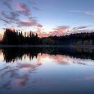 Allen Bill Pond by Pam Hogg