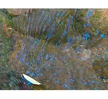 Scratching blues on the water's surface Photographic Print
