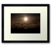 Dune Grass Framed Print