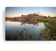 MirrorMarsh 2 Canvas Print