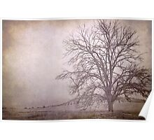 The big tree under the storm Poster