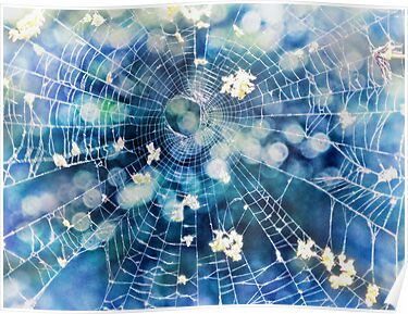 fairy web by Karin  Taylor