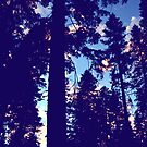 Trees Over Yosemite by Ben Tyers