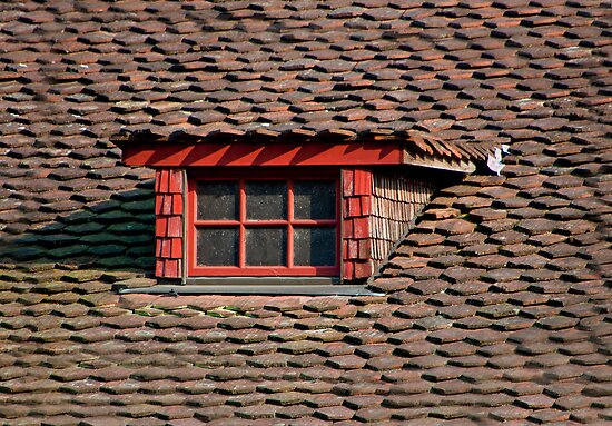 Old tiled roof and red window frame by Michael Brewer