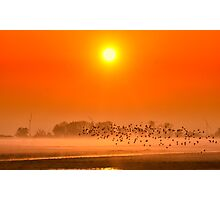 Misty day Photographic Print