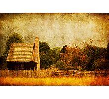 Quiet Life Photographic Print