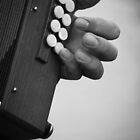 Melodeon Hands by doodlebugdee