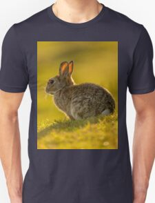 Cute Rabbit Wildlife Golden Hour Unisex T-Shirt