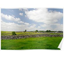 Strip Fields South of Litton  Poster