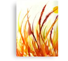 Purple Fountain Grass Canvas Print