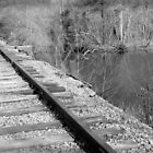 Tracks By The River by ©Dawne M. Dunton