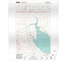 USGS Topo Map Washington State WA Mae 242129 1999 24000 Poster