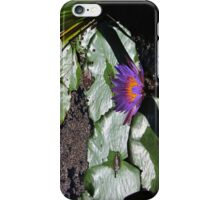 Lily Pad Accessories iPhone Case/Skin