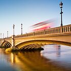 Sunrise warms Albert Bridge by JzaPhotography